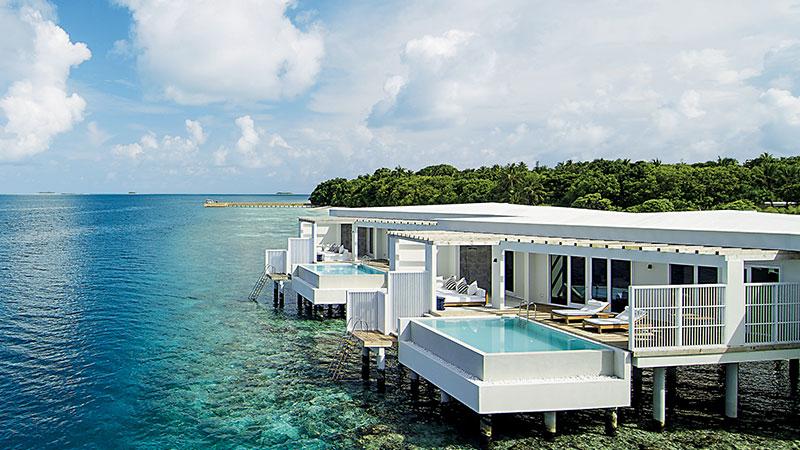 Amilla Fushi全岛共有71间别墅,分为水上屋、沙滩别墅及树屋3款房型,还有2房至4房的房种选择。