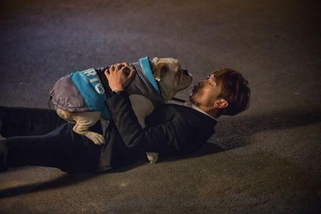 Rain抱着斗牛犬在寒风中当街拥吻。(互联网)